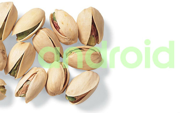 Android Pistachio - new OS from Google